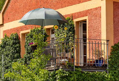Fototapeta Overgrown balcony with sun flowers and a parasol