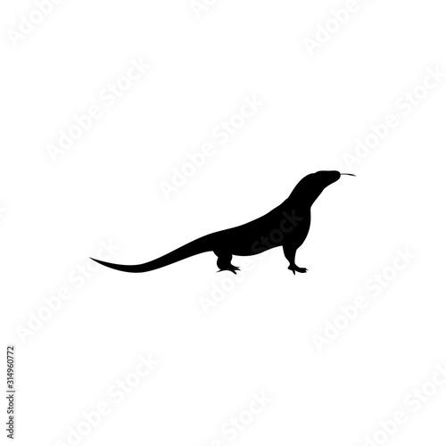 Photographie lizard