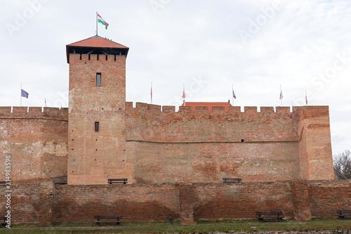 The beautiful Gyula Fortress Wallpaper Mural