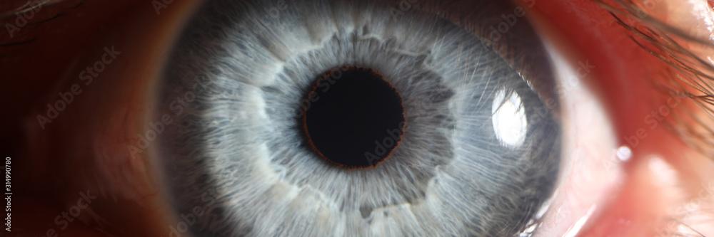 Fototapeta Blue eye male human super macro closeup. Healthy vision test concept