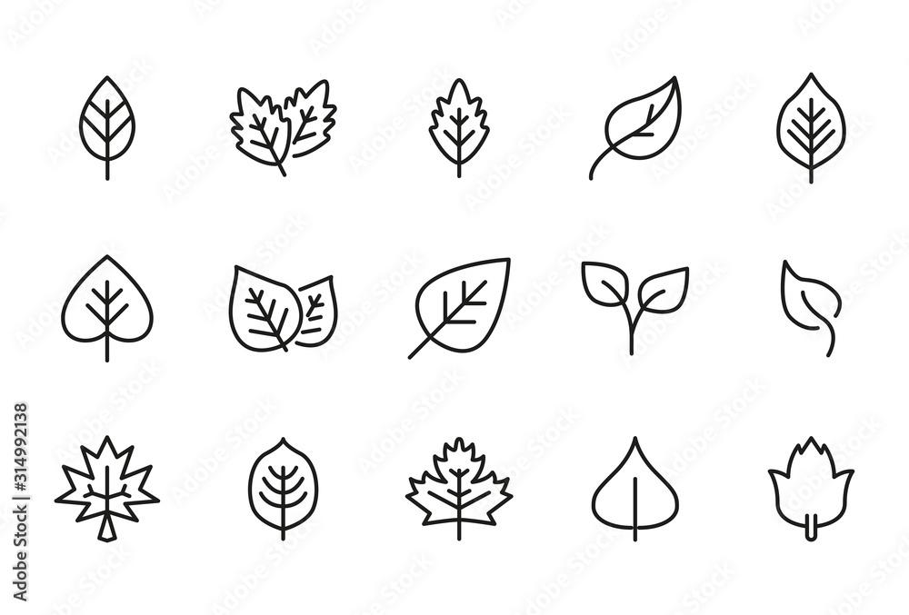 Kolekcja ikony linii wektor liści.