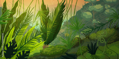 Obraz Wild tropical landscape at misty forest with jungle plants. Mysterious nature scenery in sunset or sunrise. Vector illustration - fototapety do salonu
