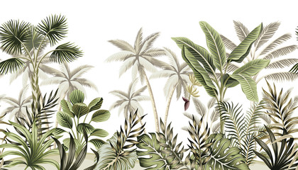 Fototapeta Do łazienki Tropical vintage botanical landscape, palm tree, banana tree, plant floral seamless border white background. Exotic green jungle wallpaper.