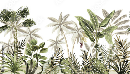 Cuadros en Lienzo Tropical vintage botanical landscape, palm tree, banana tree, plant floral seamless border white background
