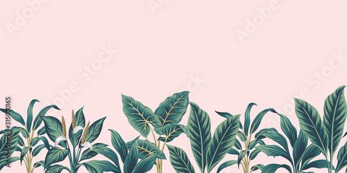 Tropical vintage plants floral botanical seamless border pink background. Exo...