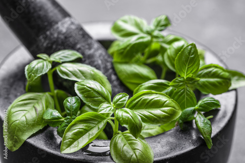 Canvastavla Green fresh basil leaves, closeup