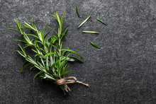 Green Fresh Rosemary Plant On Dark Background