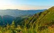 canvas print picture Sunset in green mountains