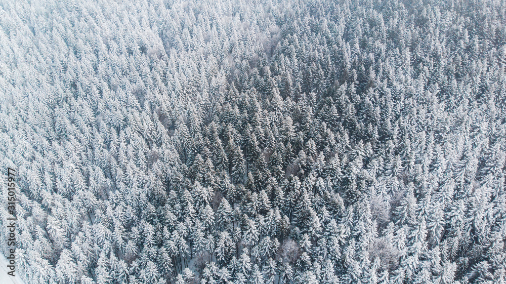 Fototapeta Abstract Winter Wonderland. Pine Trees Snow Covered. Aerial Drone view