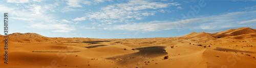 sand dune in the sahara desert Canvas Print