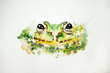 Watercolor drawing of green frog on white background, close up. Illustration of a frog. Handmade drawing