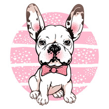 Cartoon French Bulldog With Bow
