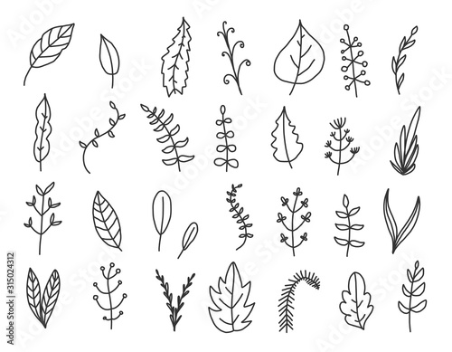 Fototapety, obrazy: Doodle leaves set. Handdrawn floral elements