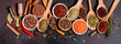 A set of spices and herbs. Indian cuisine. Pepper, salt, paprika, basil and other on a dark background
