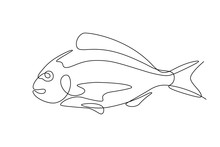 Fish In Continuous Line Art Drawing Style. Minimalist Black Linear Sketch On White Background. Vector Illustration