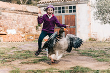 Little Girl Scaring A Goose On A Farm