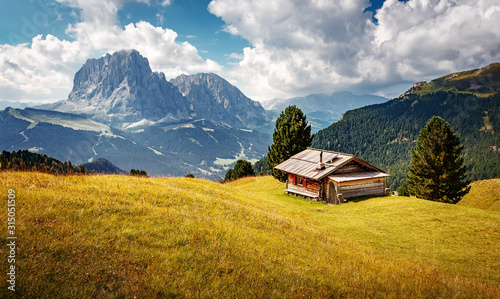 Wall mural - Scenic image of Dolomites Alps. Stunning scenery in alpine highlands at summer. Sunrise in the mountain valley with traditional hut. Natural landscape in summer time. Famouse Sassolungo on background