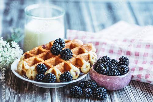 Fototapeta Petit déjeuner sain avec lait gaufre mûres du jardin et fruits confits obraz