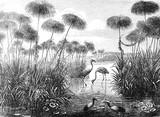 Ilustracja Vintage i retro kolaż ptaków Flamingo z tła Brockhaus Konversations-Lexikon 1908 - 315063110