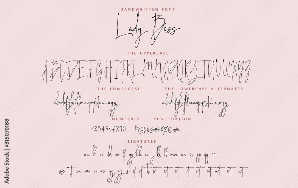 Fototapeta Handwritten script font vector alphabet Lady Boss set