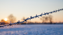 Barbed Wire On Background Of B...
