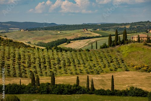 obraz lub plakat Tuscany - Landscape panorama, hills and meadow, Toscana - Italy
