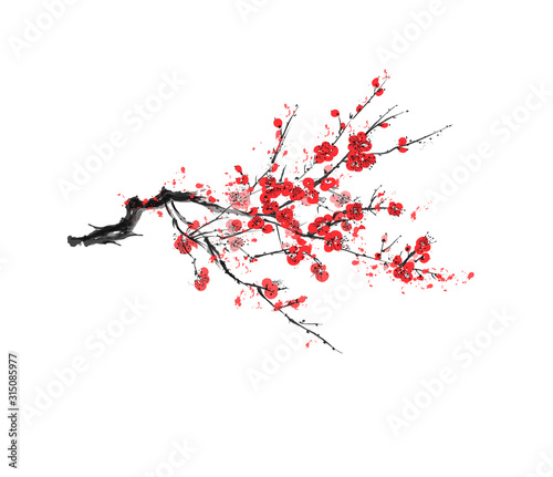 Realistic sakura blossom - Japanese cherry tree isolated on white background - V Fototapet