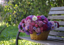 Large Basket Full Of Beautiful...