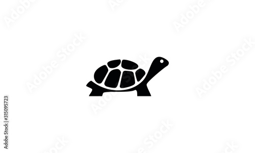 Fototapeta vector illustration of an turtle