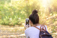 Taking Photo, Capturing Natural Beauty With A Mobile Phone