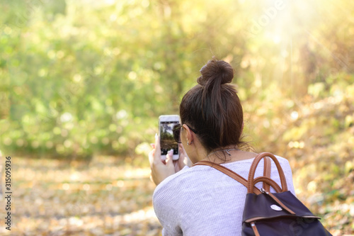 Fototapeta Taking photo, capturing natural beauty with a mobile phone  obraz
