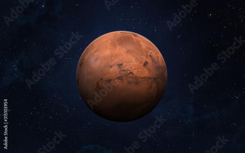 Planet Mars. Canvas Print