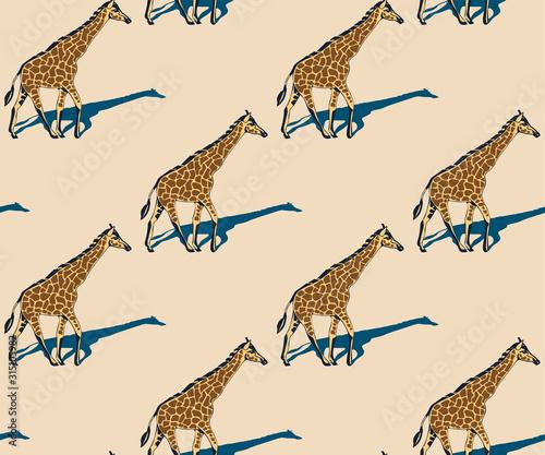 Fotografie, Obraz Vector background hand drawn exotic wild animals
