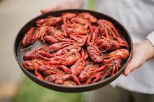 Chef Holding Tray Of Fresh Crawfish, New Orleans, Louisiana, USA