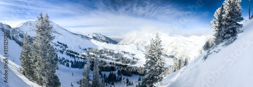 View of the slopes of Alta ski resort in Utah. #315125138