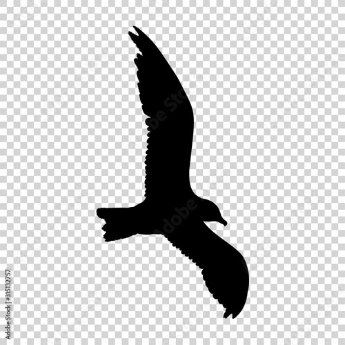 Photo Detailed bird black silhouette isolated on transparent background