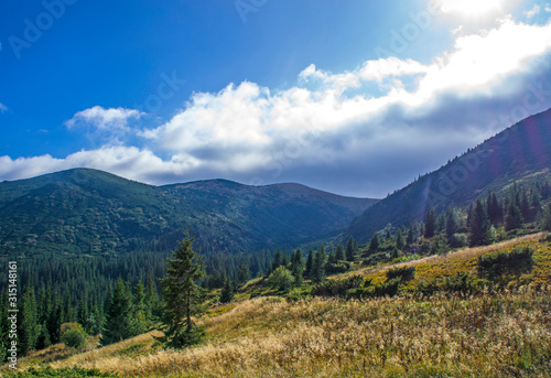 Colorful mountain landscape in the summer mountains. Large hills with blue sky. #315148161