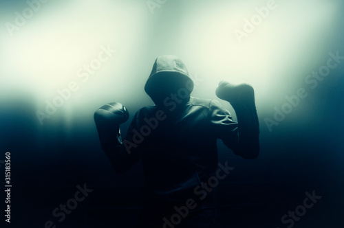 Photo  Boxer is in the ring