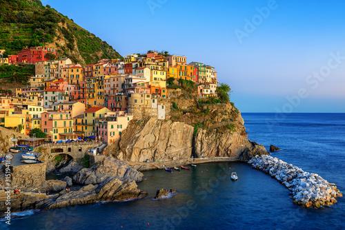 Manarola, Italy, a picturesque village in Cinque Terre Tableau sur Toile