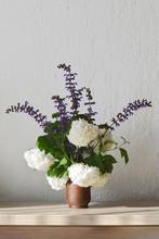 Snowball Viburnum Flowers And Common Sage In Vase