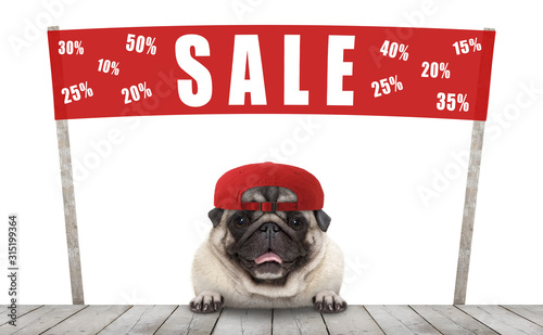Cuadros en Lienzo  frolic smiling merchant pug puppy dog with hat and red promotional  banner sign