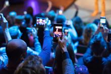 Audience Using Camera Phones