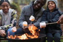 Grandfather And Grandchildren Roasting Marshmallows At Campfire