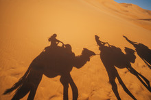 Shadows Of People Riding Camel...