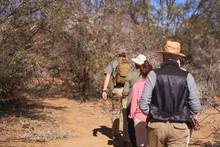 Safari Tour Guide Leading Grou...