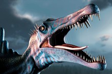 Spinosaurus Head Study