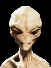 Alien Head, Illustration