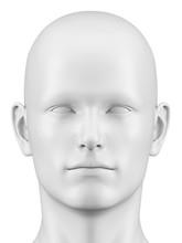 Human Head, Illustration