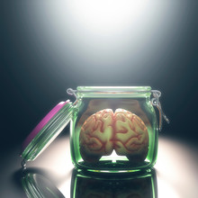 Human Brain In Glass Jar With Lid Open