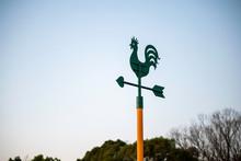 Chicken Weathervane, Rooster Weathervane. Meteorological Instrument.